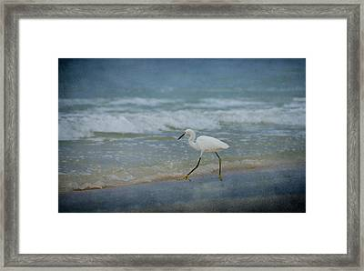 Egret Framed Print by Sandy Keeton