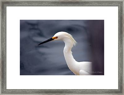 Egret Soft Framed Print