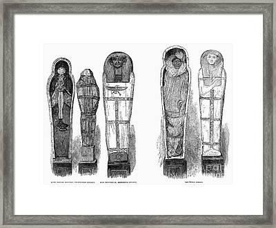 Egypt: Royal Mummies, 1882 Framed Print by Granger
