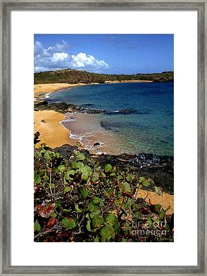 El Convento Beach Framed Print by Thomas R Fletcher