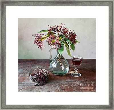 Elderberries 08 Framed Print by Nailia Schwarz