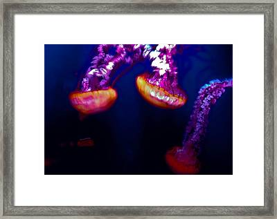 Electric Light Disco Framed Print by DigiArt Diaries by Vicky B Fuller