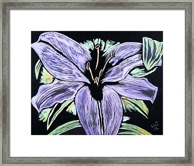 Framed Print featuring the drawing Electric Lily Phase Two by Lisa Brandel