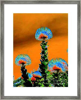 Electric Sunset In My Imaginary Garden Framed Print by Angela L Walker