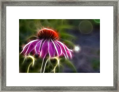 Framed Print featuring the photograph Electrified Coneflower by Lynne Jenkins
