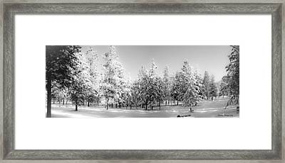 Framed Print featuring the photograph Elegant Wonderland by Janie Johnson