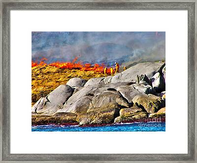 Elements Framed Print by Joanne Kocwin