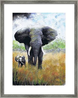 Elephant And Baby Framed Print