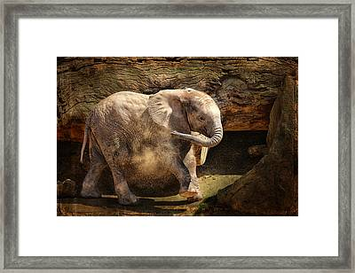 Elephant Calf Framed Print by Larry Marshall