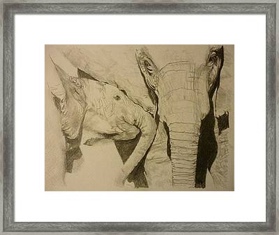 Elephant Calm And Mommy 9 X 12 Inch Drawing By Pigatopia Framed Print by Shannon Ivins