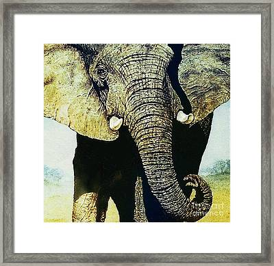 Elephant Close-up Framed Print by Hartmut Jager