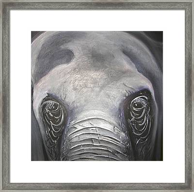 Elephant Eyes Framed Print