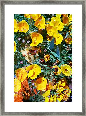 Elfin Child Of Poppies Framed Print by Cyoakha Grace