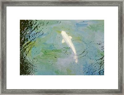 Elusive Framed Print by Rebecca Cozart