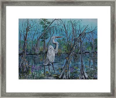 Elusive Swamp Framed Print