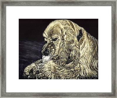 Elvis The Dog Framed Print by Robert Goudreau