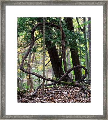 Embrace Framed Print by Barbara McMahon