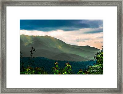 Emerald And Gold Framed Print by Scott Hervieux