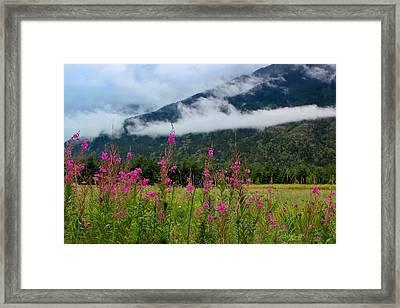 Emerging Mist Framed Print by April Reppucci
