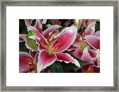 Emotionally Yours Framed Print by Shawn Hughes