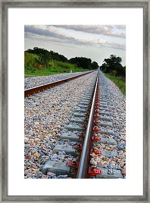 Empty Railway Framed Print by Carlos Caetano