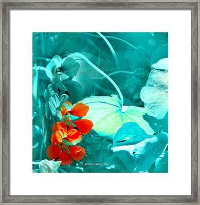 En El Estanque Framed Print