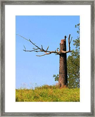 En Garde Framed Print by Kristin Elmquist
