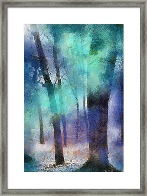 Enchanted Forest. Painting With Light Framed Print by Jenny Rainbow