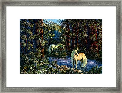 Enchanted Forest Framed Print by Steve Roberts