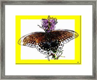 Enchanted Wings Card Framed Print by Debra     Vatalaro
