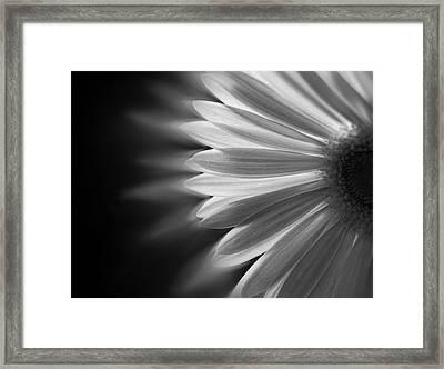 Enchanting Framed Print by Ivelina G
