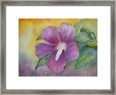End Of Summer Framed Print by Stella Schaefer