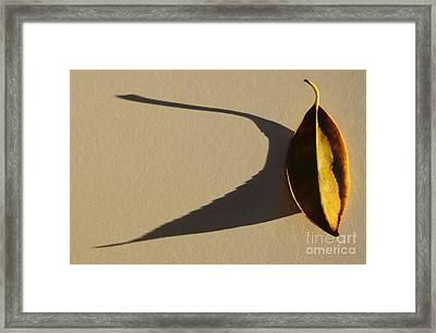 End Of The Day Framed Print by Dan Holm