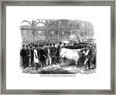 England: Cattle Show, 1863 Framed Print by Granger