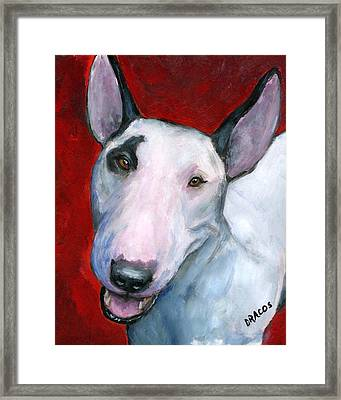 English Bull Terrier Looking Up On Red Framed Print by Dottie Dracos