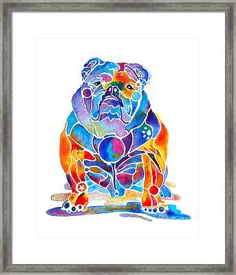 English Bulldog Whimsical Colors Framed Print by Jo Lynch