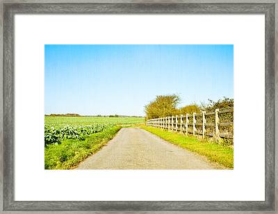 English Countryside Framed Print by Tom Gowanlock