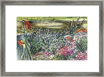 English Garden Framed Print by Mindy Newman