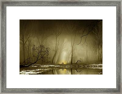 Enigmatic Passage Framed Print by Igor Zenin