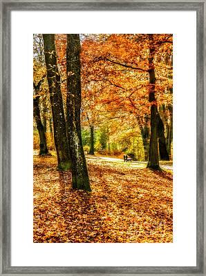 enjoy the autmn II Framed Print by Hannes Cmarits