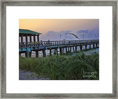 Framed Print featuring the photograph Enjoying The Sunrise by Anne Rodkin