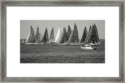 Ensenada Race IIi Framed Print