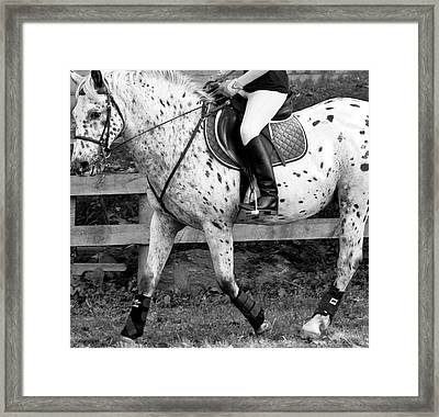 Enter Working Trot Framed Print by Betsy Knapp