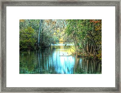 Entrance To Swanee Framed Print by Ronald T Williams