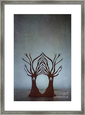 Entwined Framed Print by Catherine MacBride