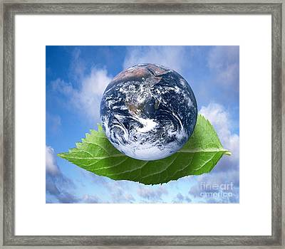 Environmental Issues Framed Print by Victor de Schwanberg  and Photo Researchers