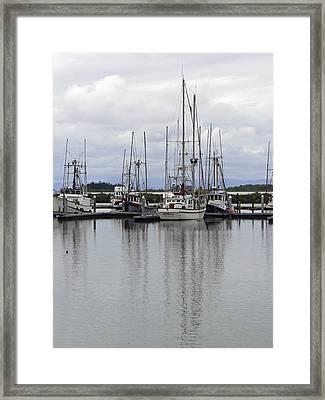 Eponym Framed Print by Pamela Patch