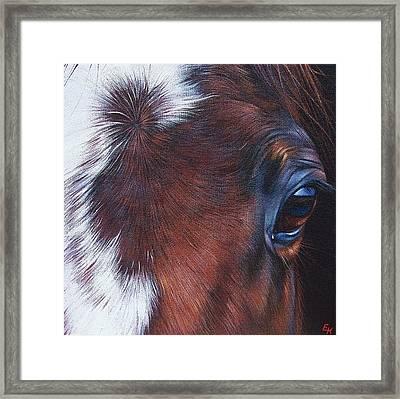Equine 1 Framed Print by Elena Kolotusha