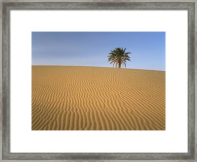 Erg Chebbi, Merzouga, Morocco Framed Print by Axiom Photographic
