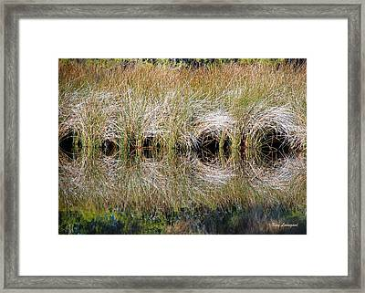 Escape Hatches Framed Print